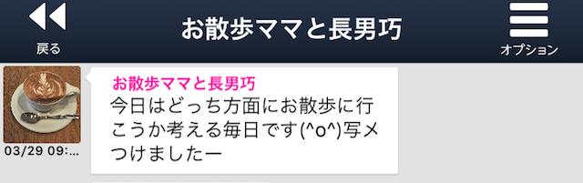 yorutomo_sakura15